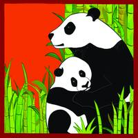 Panda Bears - Mother & Cub