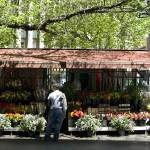 """The Flower Stall, Swanston Street"" by macondo"