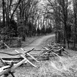 """Savage, Steven E., Manassas Battlefield Park Fence"" by Steve_Savage"