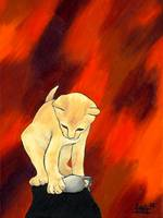 Kitten red background