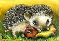 Little hedgehog and apple