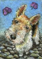 Wire haired fox terrier and butterflies