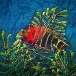 """""""Ocean Dudes - Red Banded Wrasse"""" by sueduda"""