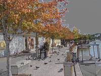 Schoen Place Towpath in Autumn