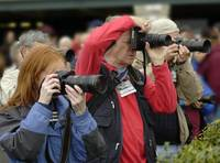 Serious Photographers at Thoroughbred Horse Race 8