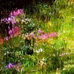 """Giverny spirit XXV"" by Woodsman"