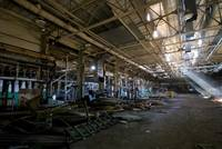 Curtis Paper Mill