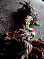 Colourful Dog Toy