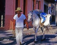Mexico Man Leads Horse