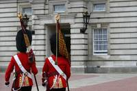 london - Palace Guards