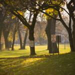 """Brittingham Park"" by nickwelshphotography"