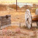 """Wyoming Horseshoes"" by rdwnggrl"