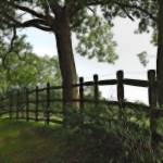 """""""Weekley Fenced"""" by TheD70sisters"""