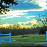 """""""Farm Scene"""" by shelshots"""