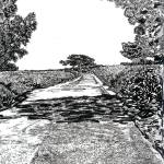 """The road at Torrey Pines Reverve by RD Riccoboni"" by BeaconArtWorksCorporation"