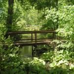 """""""Bridges"""" by ajkartworks"""