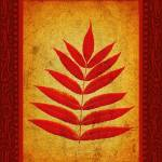 """Sumac Leaves"" by HWP"