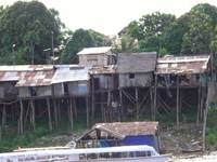 Houses on the Amazon River