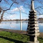 """""""A couple of monuments in Washington DC"""" by nayr"""