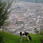 """View of Quito Antiguo"" by lampshade84"
