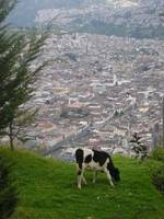 View of Quito Antiguo