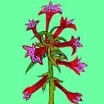 """""""Flower 10"""" by kostliva"""