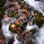 """""""Wakheena Falls #2"""" by AnnetteCollins"""