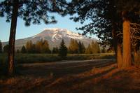 Mount Shasta Summer Snow