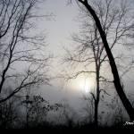 """Flashlight Sunrise"" by joelpatrick"