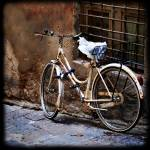 """Italian Bicycle"" by juliekruger"
