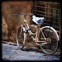 Italian Bicycle