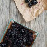 """""""blackberries"""" by sabrakrock"""