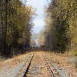"""Railroad Avenue"" by ianclasper"