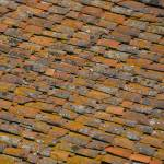 """Roof Tiles No 2 12x12"" by Land-aid"