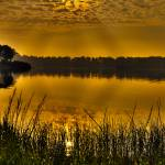 """""""Sunrise at Otter Point Creek"""" by robbdee40"""