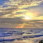 """Sunrise Margarita - 2"" by robbdee40"