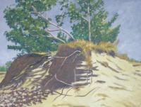 Sleeping Bear Dunes, Dune Series #1 ©1994