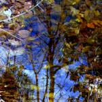 """Imagekind"" by AprilMoran"