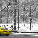 """New York City Snow with yellow cab"" by opadpro"