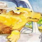 """""""Drive Revive"""" by cedarmesaart"""