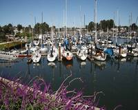 The Harbor at Santa Cruz, CA