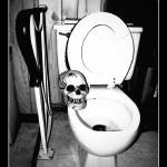"""""""Skull on Toilet"""" by DerekAudette"""
