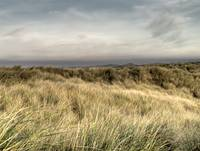 Southport Dunes
