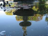 Bethesda Fountain Reflection 2