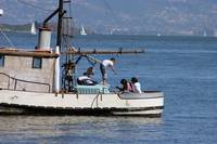 Sausalito Fishing Boat