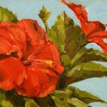 """Florida Hibiscus"" by davidwesterfield"