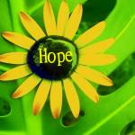 """""HOPE"""" by milikacreativearts"