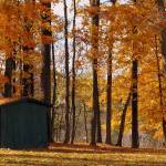 """""""Autumn Colors with Barn"""" by PhotoFitness"""