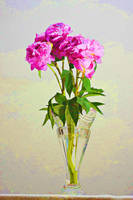Pink peony in crystal vase.