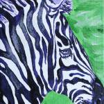 """FREEDOM THE ZEBRA"" by AngelaUngren"